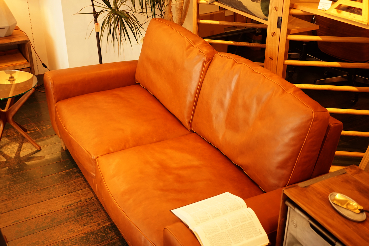 ACME furniture FRESNO SOFA